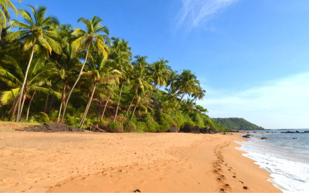 35 Things to do in Goa