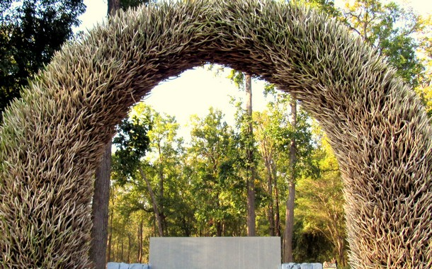 Antler gate at Kanha NPark