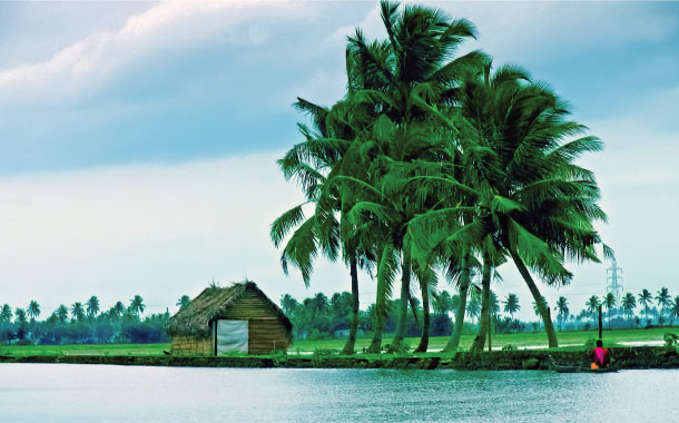 Back Waters of Alleppey