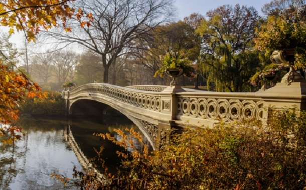 Bridge in Central Park, New York