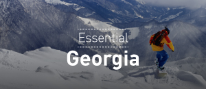 Essential Georgia