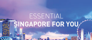 Essential Singapore for you