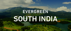 Evergreen South India