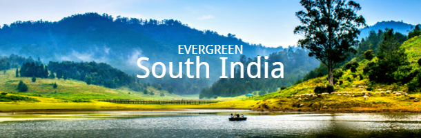 Evergreen South