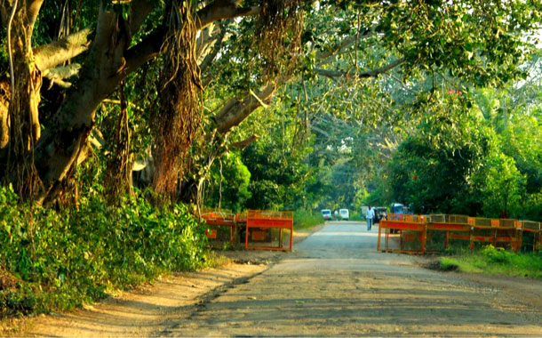 Exploring the wild side of Mysore at Nagarhole National Park