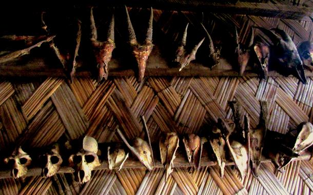 Headhunted trophies in Nagaland's Khonoma