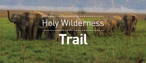 Holy Wilderness Trail