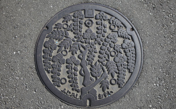 Manhole cover in Fujimi-shi, Osui, Japan