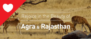 Rejoice in the Beauty of Agra and Rajasthan