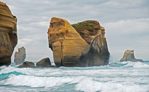 Sandstone cliffs, Tunnel Beach