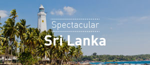 Spectacular Sri Lanka Tour Package