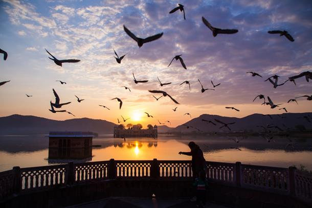 Sunset at Jal Mahal