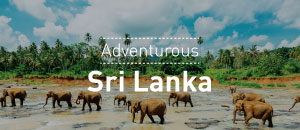 Adventurous Sri Lanka Tour Package