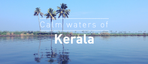 Calm waters of Kerala