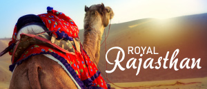 Royal Rajasthan