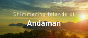 Shimmering Islands of Andaman